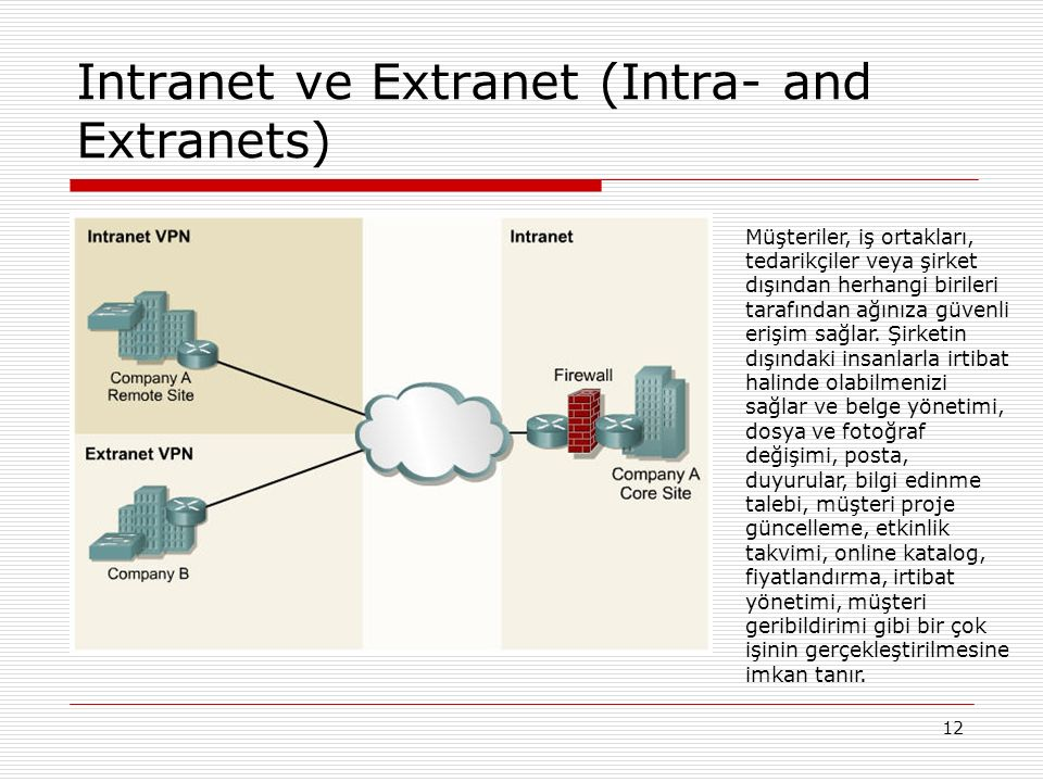 Intranet ve Extranet (Intra- and Extranets)