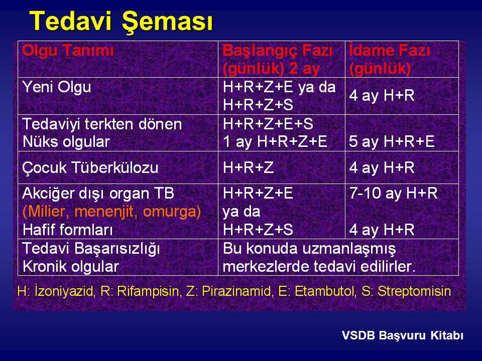 Tedavi Şeması VSDB Başvuru Kitabı