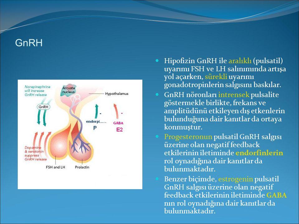 GnRH Hipofizin GnRH ile aralıklı (pulsatil) uyarımı FSH ve LH salınımında artışa yol açarken, sürekli uyarımı gonadotropinlerin salgısını baskılar.