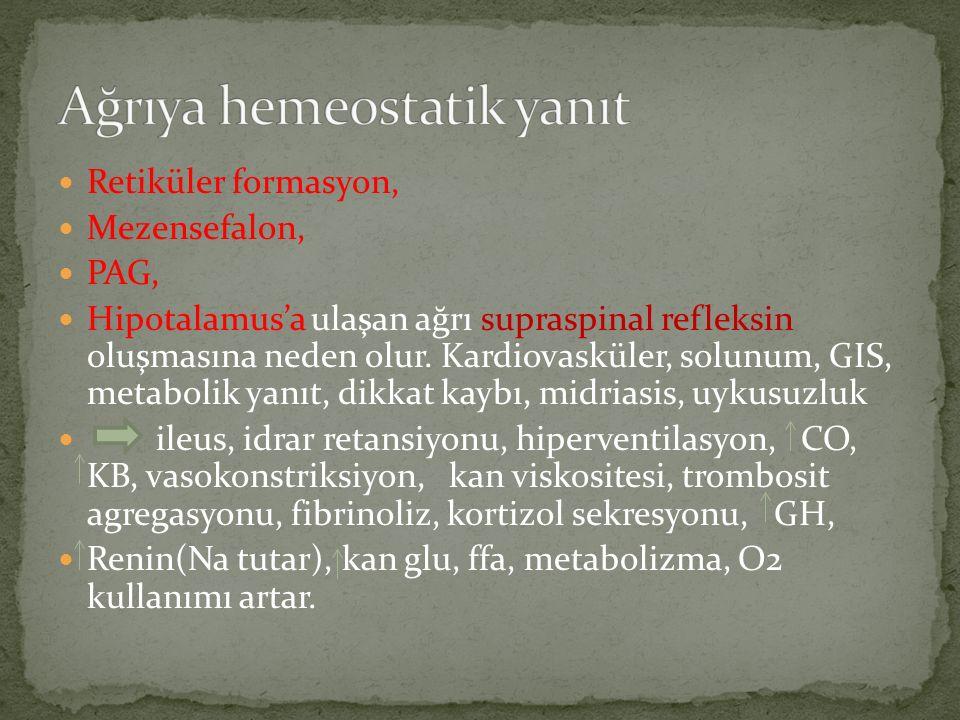 Ağrıya hemeostatik yanıt