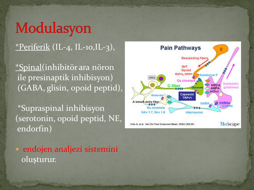 Modulasyon *Periferik (IL-4, IL-10,IL-3), *Spinal(inhibitör ara nöron