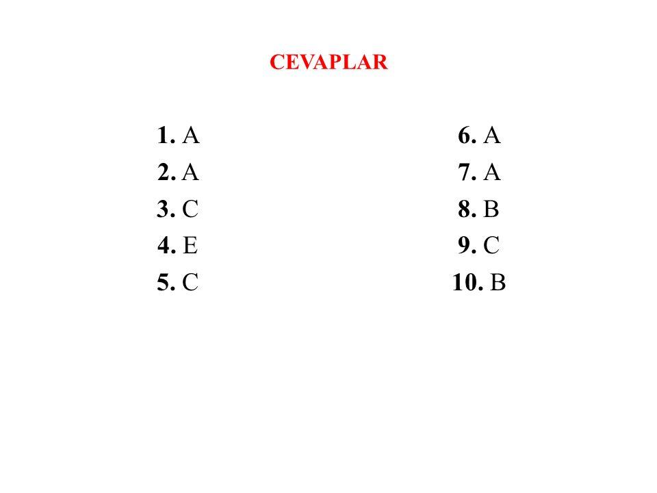 CEVAPLAR 1. A 2. A 3. C 4. E 5. C 6. A 7. A 8. B 9. C 10. B
