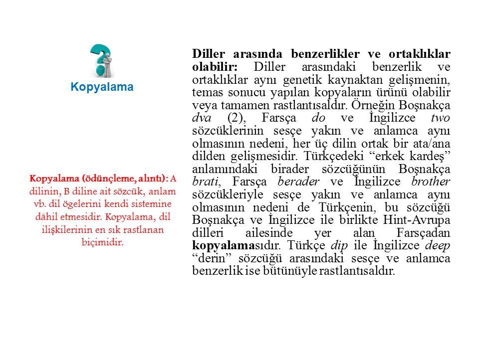 Diller arasında benzerlikler ve ortaklıklar olabilir: Diller arasındaki benzerlik ve ortaklıklar aynı genetik kaynaktan gelişmenin, temas sonucu yapılan kopyaların ürünü olabilir veya tamamen rastlantısaldır. Örneğin Boşnakça dva (2), Farsça do ve İngilizce two sözcüklerinin sesçe yakın ve anlamca aynı olmasının nedeni, her üç dilin ortak bir ata/ana dilden gelişmesidir. Türkçedeki erkek kardeş anlamındaki birader sözcüğünün Boşnakça brati, Farsça berader ve İngilizce brother sözcükleriyle sesçe yakın ve anlamca aynı olmasının nedeni de Türkçenin, bu sözcüğü Boşnakça ve İngilizce ile birlikte Hint-Avrupa dilleri ailesinde yer alan Farsçadan kopyalamasıdır. Türkçe dip ile İngilizce deep derin sözcüğü arasındaki sesçe ve anlamca benzerlik ise bütünüyle rastlantısaldır.