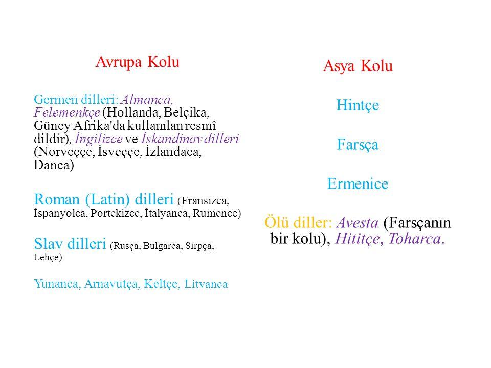 Slav dilleri (Rusça, Bulgarca, Sırpça, Lehçe)