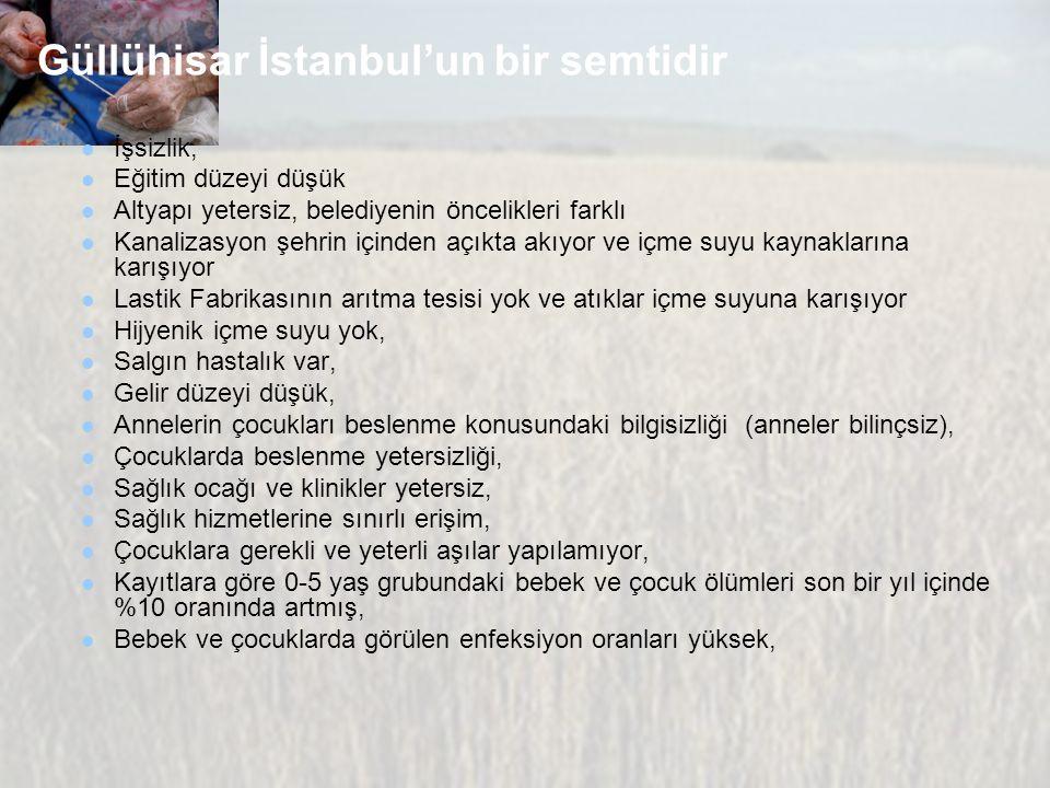 Güllühisar İstanbul'un bir semtidir