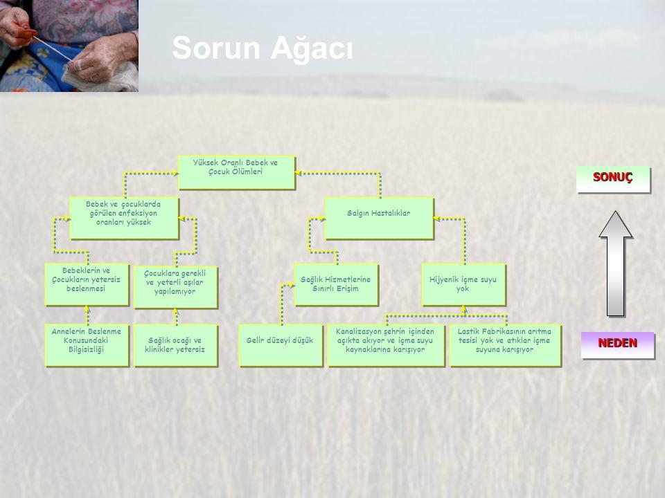 Sorun Ağacı SONUÇ NEDEN Yüksek Oranlı Bebek ve Çocuk Ölümleri