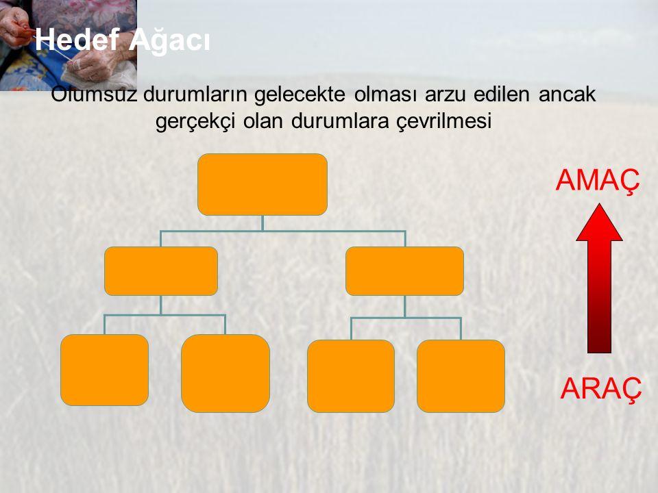 Hedef Ağacı Olumsuz durumların gelecekte olması arzu edilen ancak gerçekçi olan durumlara çevrilmesi.