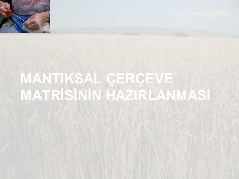 MANTIKSAL ÇERÇEVE MATRİSİNİN HAZIRLANMASI