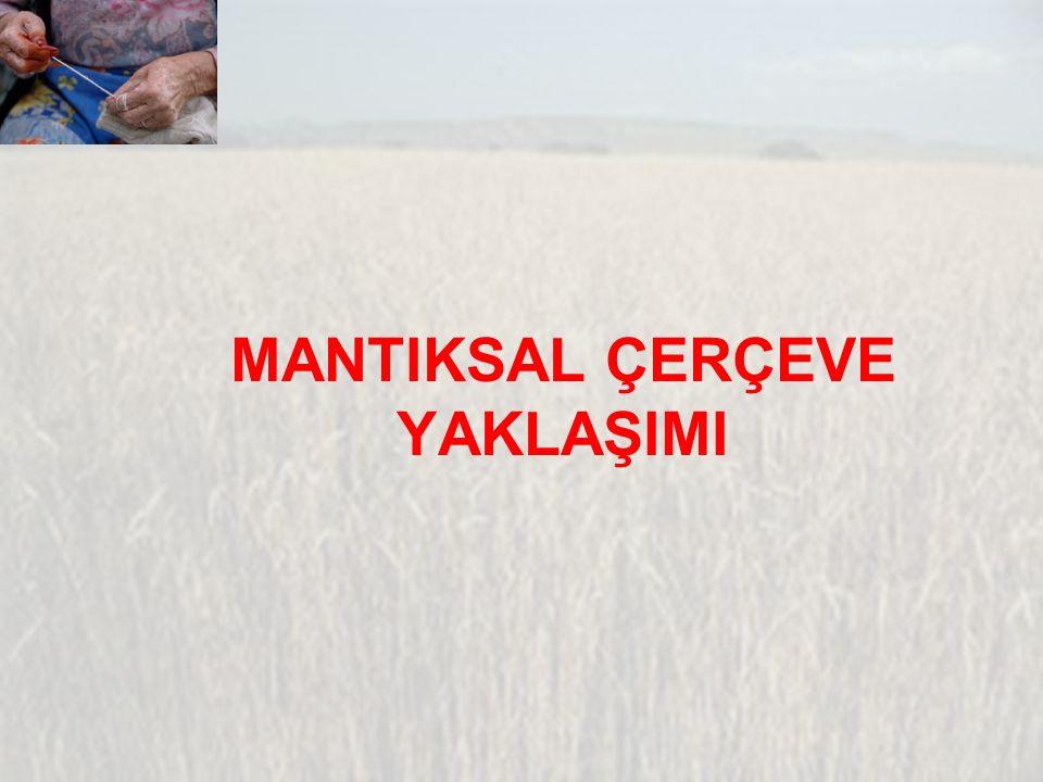 MANTIKSAL ÇERÇEVE YAKLAŞIMI