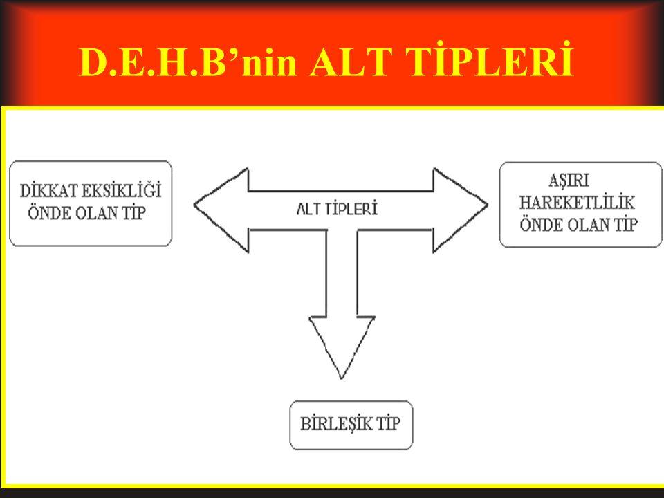 D.E.H.B'nin ALT TİPLERİ