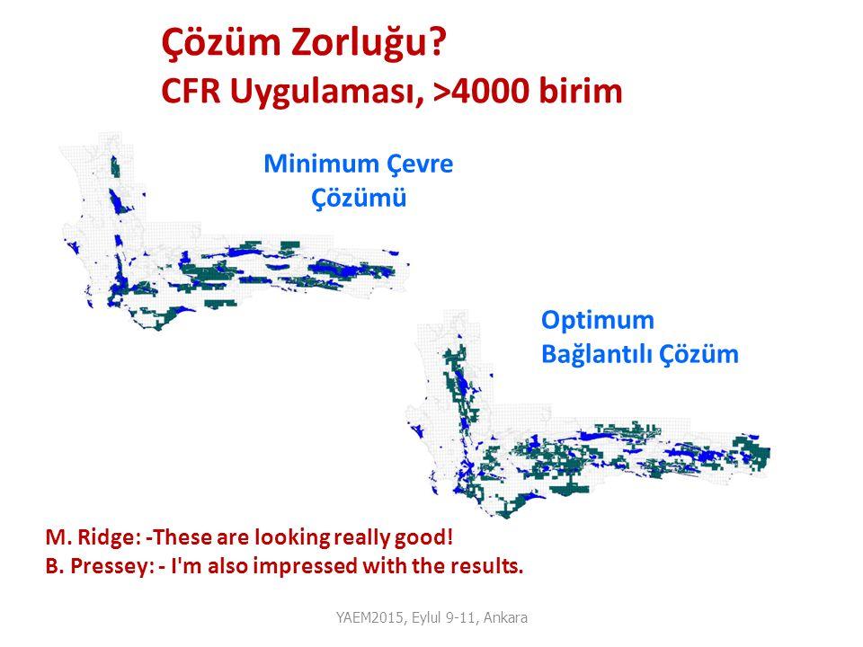 Çözüm Zorluğu CFR Uygulaması, >4000 birim Minimum Çevre Çözümü