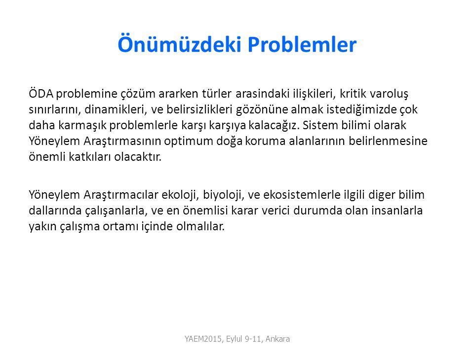 Önümüzdeki Problemler