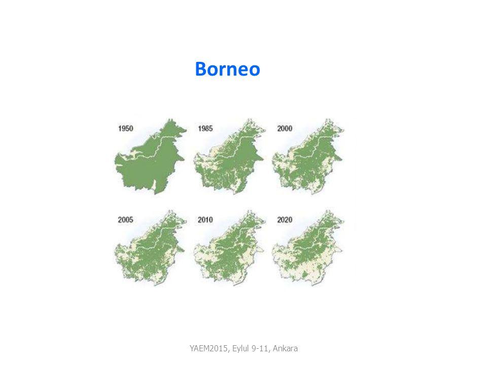 Borneo YAEM2015, Eylul 9-11, Ankara