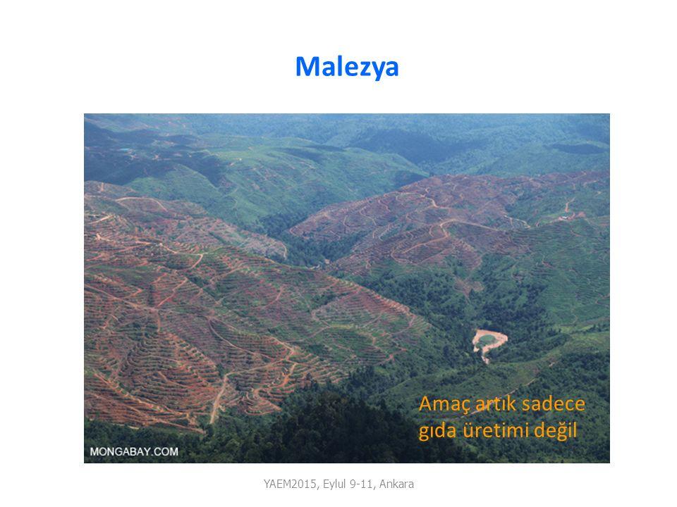 Malezya Amaç artık sadece gıda üretimi değil