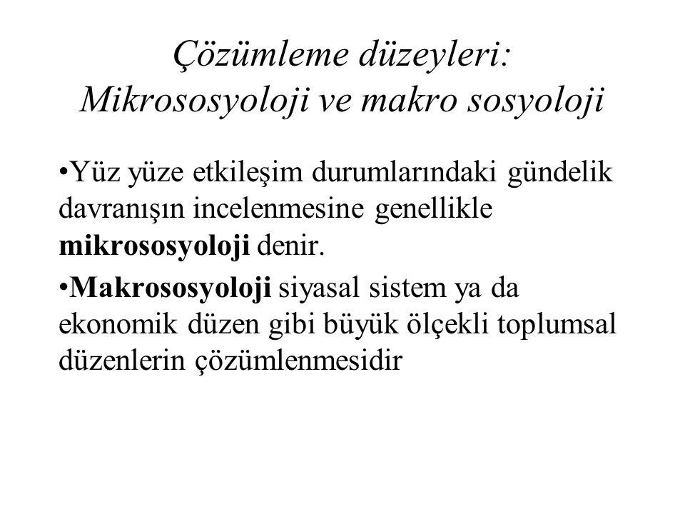 Çözümleme düzeyleri: Mikrososyoloji ve makro sosyoloji