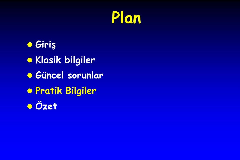 Plan Giriş Klasik bilgiler Güncel sorunlar Pratik Bilgiler Özet