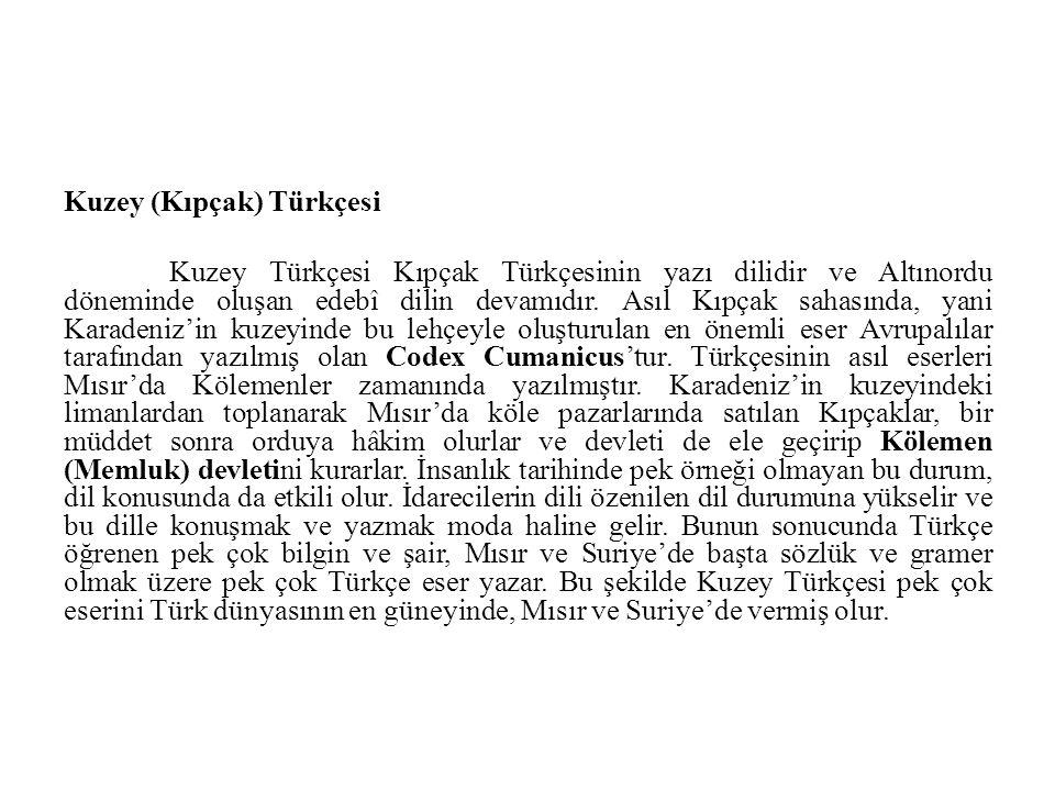 Kuzey (Kıpçak) Türkçesi