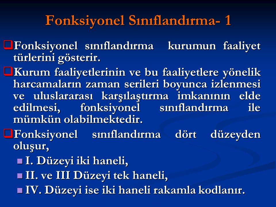 Fonksiyonel Sınıflandırma- 1