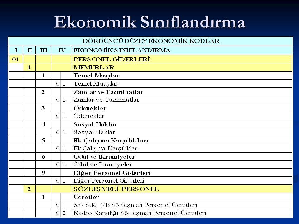 Ekonomik Sınıflandırma
