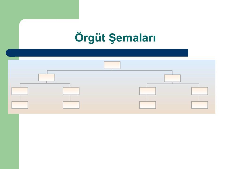 Örgüt Şemaları