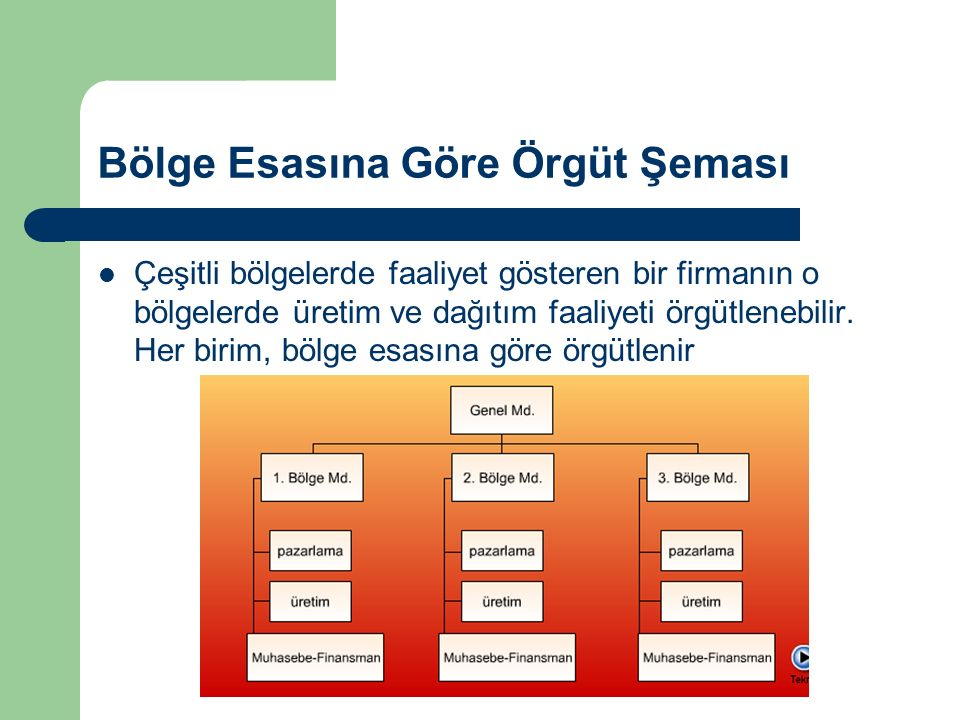 Bölge Esasına Göre Örgüt Şeması
