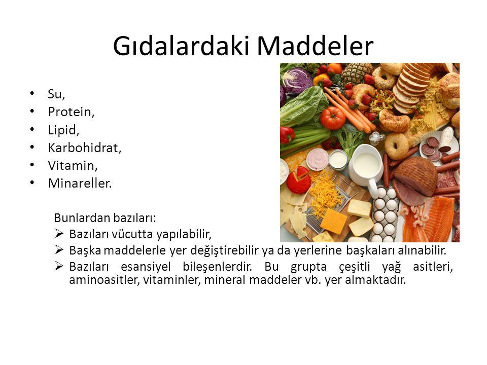 Gıdalardaki Maddeler Su, Protein, Lipid, Karbohidrat, Vitamin,