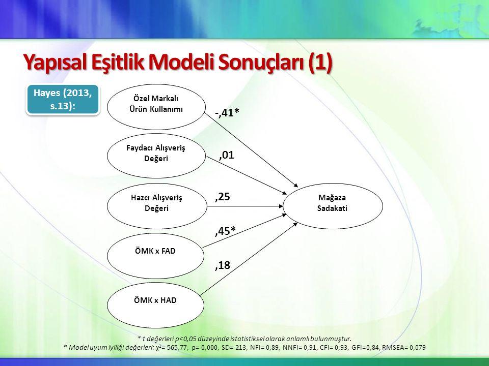 Yapısal Eşitlik Modeli Sonuçları (1)