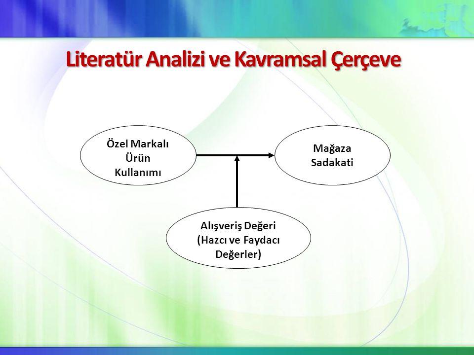 Literatür Analizi ve Kavramsal Çerçeve