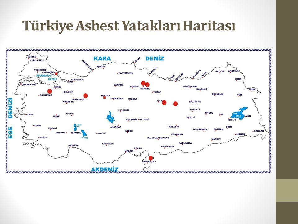 Türkiye Asbest Yatakları Haritası