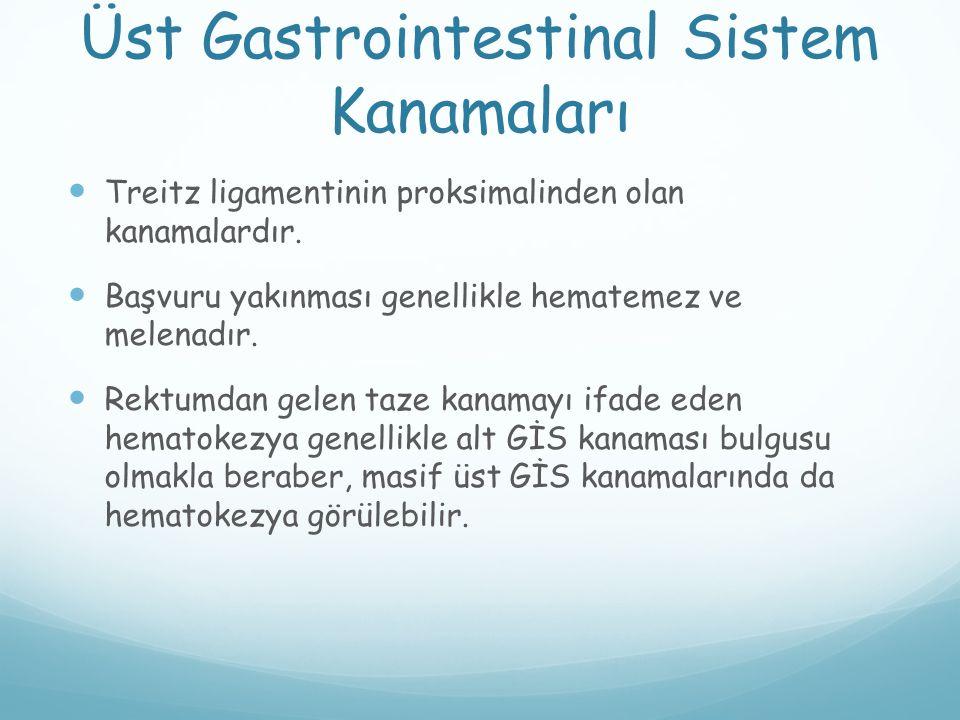 Üst Gastrointestinal Sistem Kanamaları