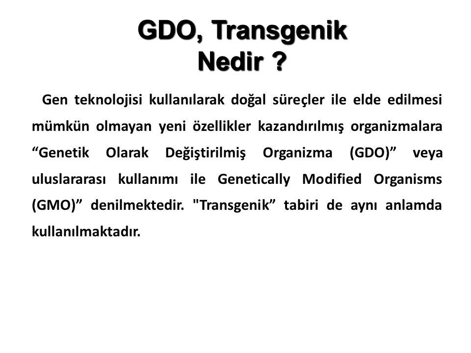 GDO, Transgenik Nedir