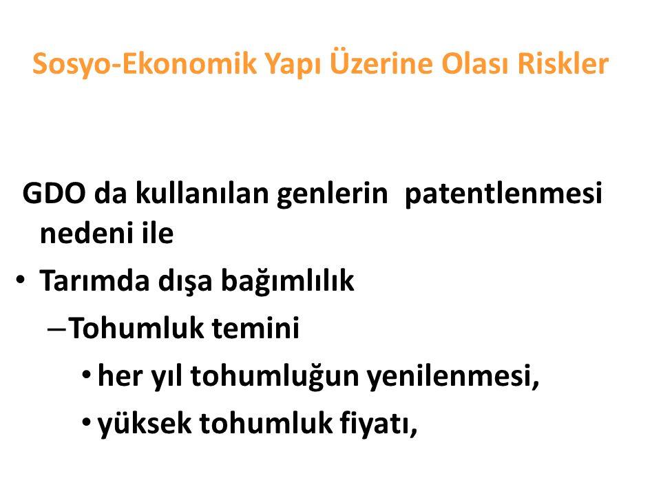 Sosyo-Ekonomik Yapı Üzerine Olası Riskler