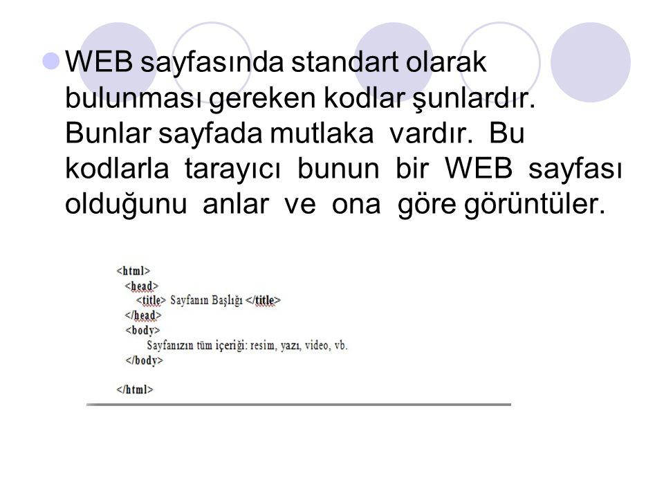 WEB sayfasında standart olarak bulunması gereken kodlar şunlardır