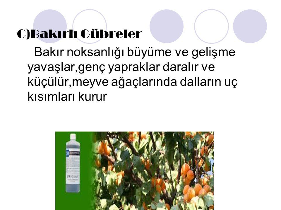C)Bakırlı Gübreler Bakır noksanlığı büyüme ve gelişme yavaşlar,genç yapraklar daralır ve küçülür,meyve ağaçlarında dalların uç kısımları kurur