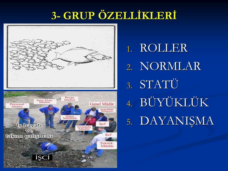 3- GRUP ÖZELLİKLERİ ROLLER NORMLAR STATÜ BÜYÜKLÜK DAYANIŞMA