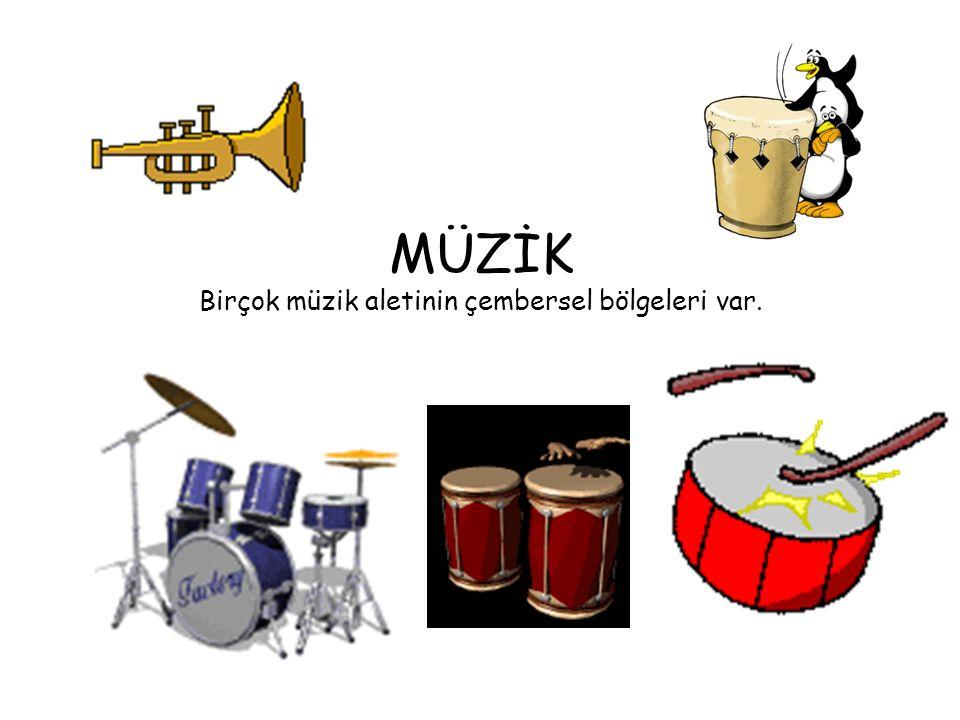 MÜZİK Birçok müzik aletinin çembersel bölgeleri var.