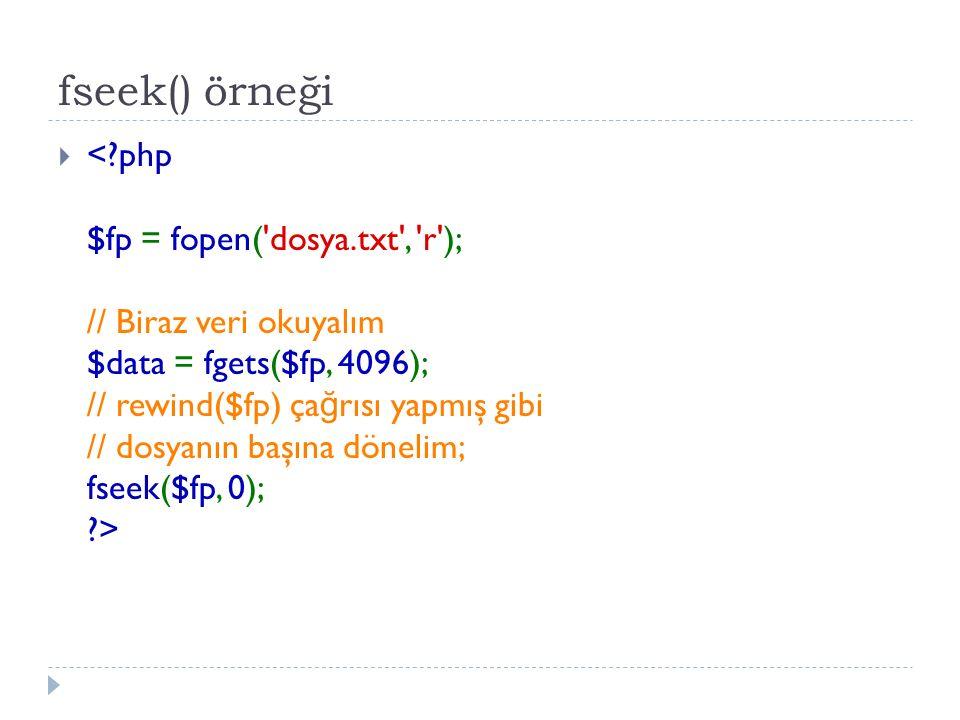 fseek() örneği