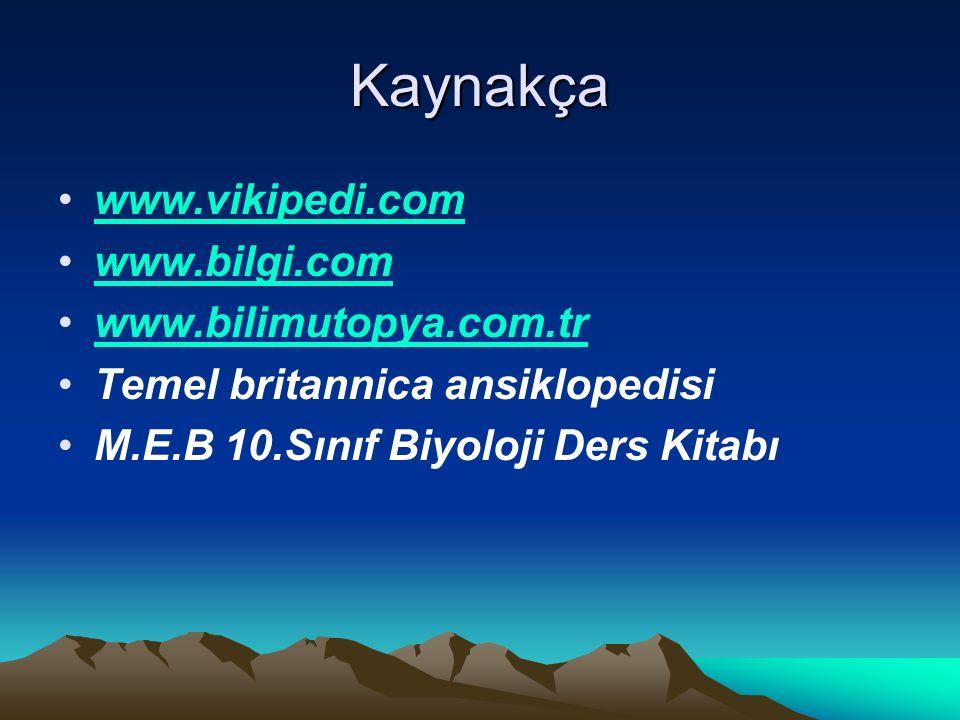 Kaynakça www.vikipedi.com www.bilgi.com www.bilimutopya.com.tr