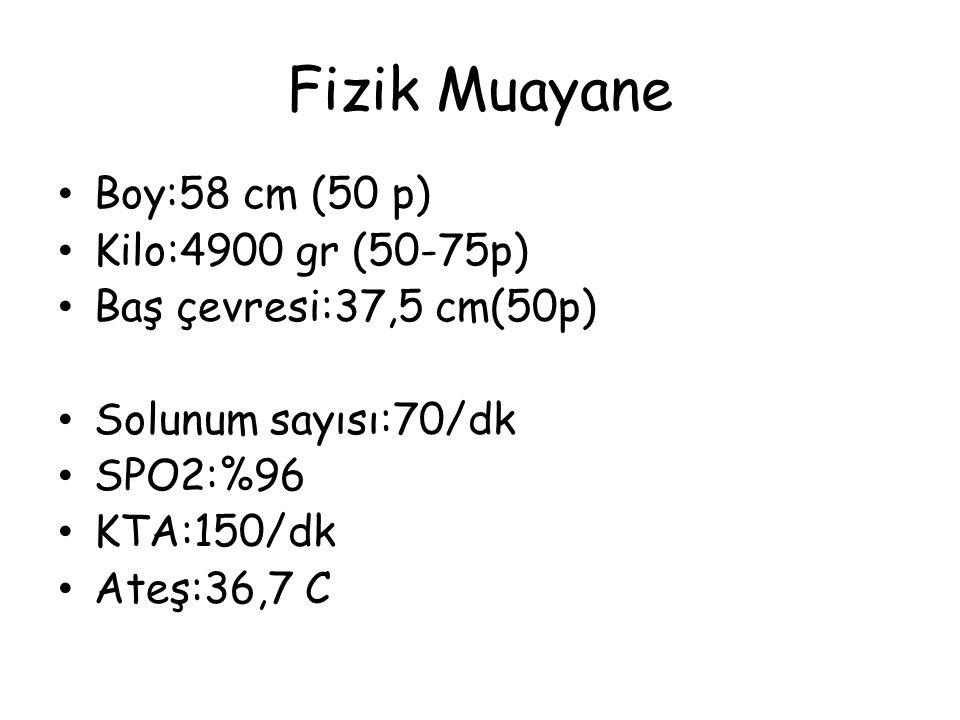 Fizik Muayane Boy:58 cm (50 p) Kilo:4900 gr (50-75p)