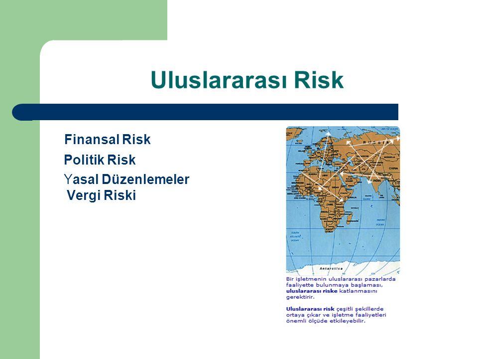 Uluslararası Risk Finansal Risk Politik Risk