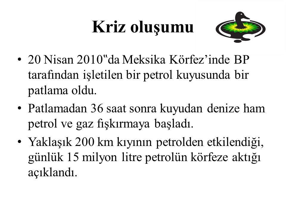"""Kriz oluşumu 20 Nisan 2010""""da Meksika Körfez'inde BP tarafından işletilen bir petrol kuyusunda bir patlama oldu."""
