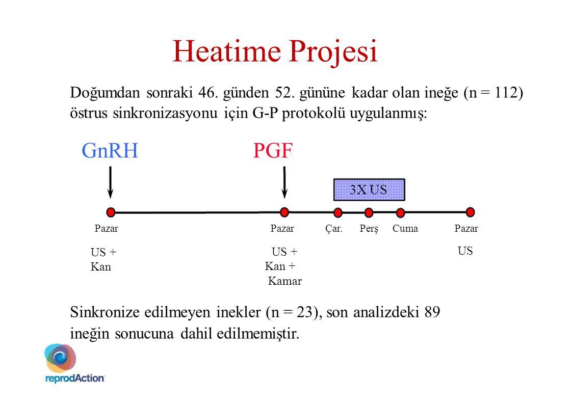 Heatime Projesi Doğumdan sonraki 46. günden 52. gününe kadar olan ineğe (n = 112) östrus sinkronizasyonu için G-P protokolü uygulanmış: