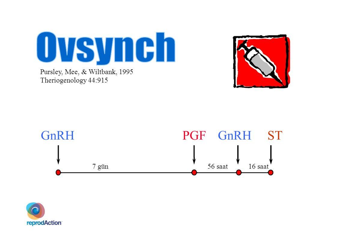 GnRH PGF GnRH ST Pursley, Mee, & Wiltbank, 1995 Theriogenology 44:915