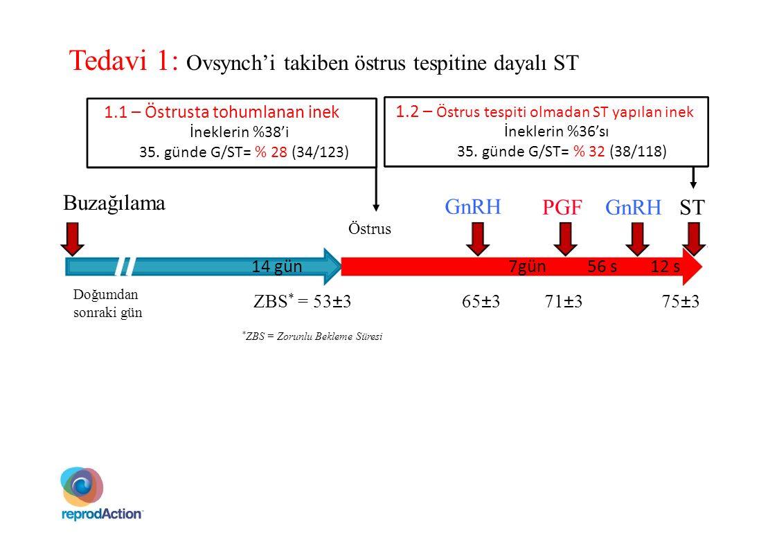 Tedavi 1: Ovsynch'i takiben östrus tespitine dayalı ST
