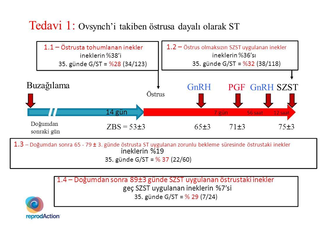 Tedavi 1: Ovsynch'i takiben östrusa dayalı olarak ST