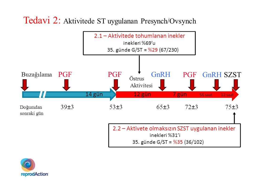 Tedavi 2: Aktivitede ST uygulanan Presynch/Ovsynch