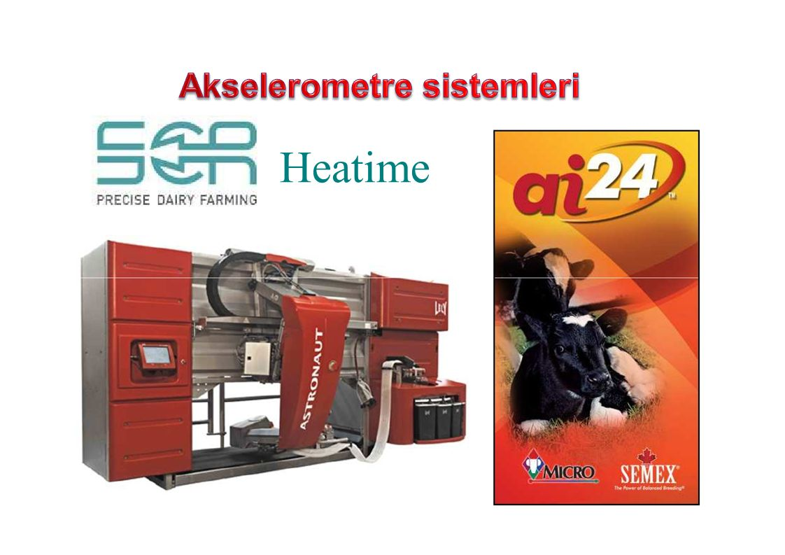Akselerometre sistemleri