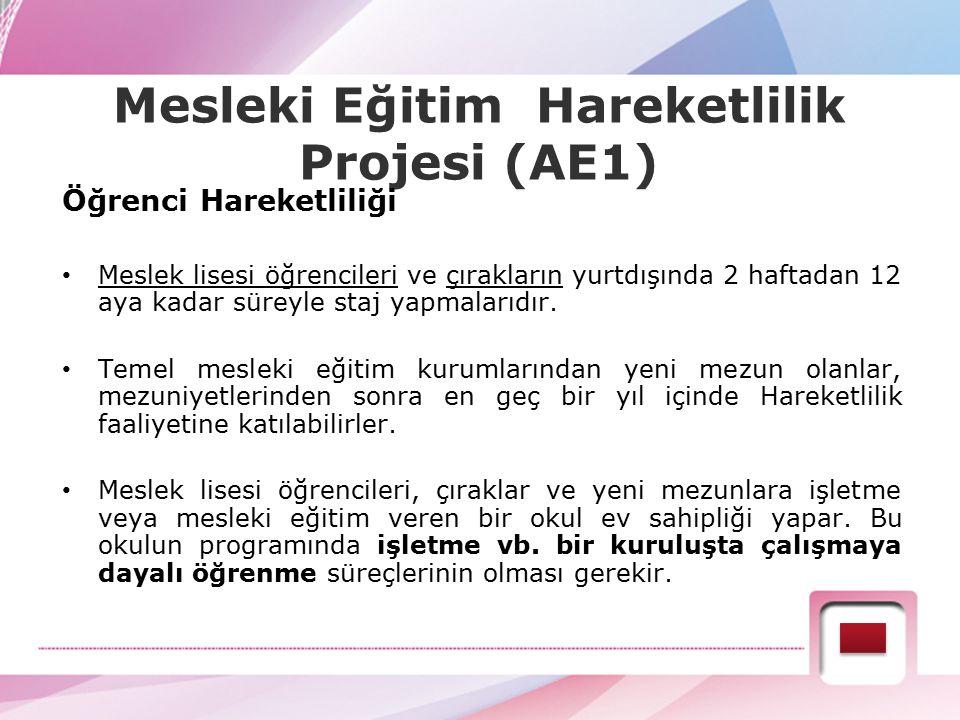 Mesleki Eğitim Hareketlilik Projesi (AE1)