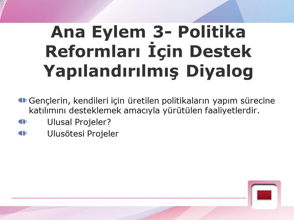 Ana Eylem 3- Politika Reformları İçin Destek Yapılandırılmış Diyalog