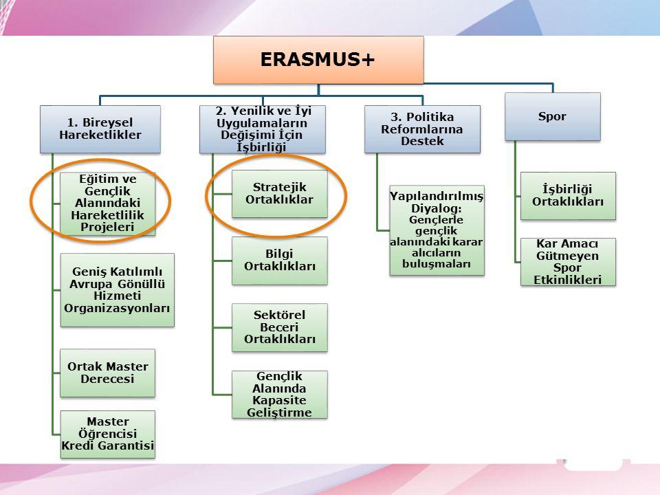 ERASMUS+ 1. Bireysel Hareketlikler